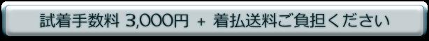 手数料 3,000 円+送料